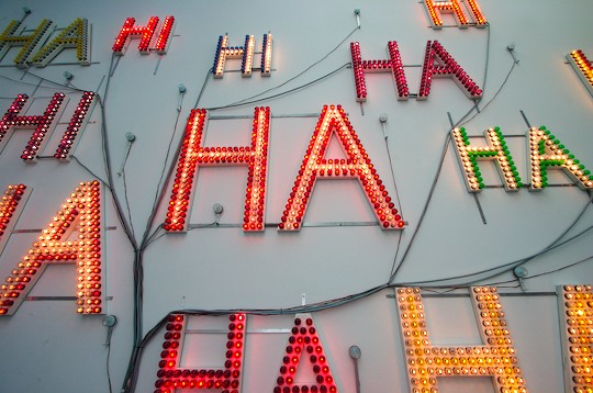 HI HA in coloured lights