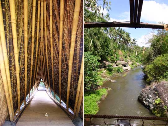 Looking down a corridor of bamboo polse that is the inside of the bridge, view from bridge down river