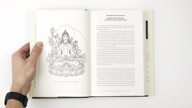 Interior spread of hard cover book showing image and text